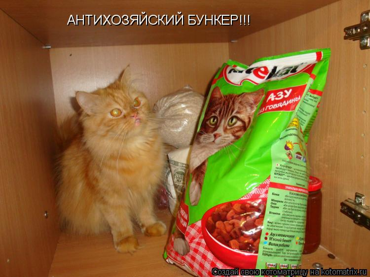 Котоматрица: АНТИХОЗЯЙСКИЙ БУНКЕР!!!