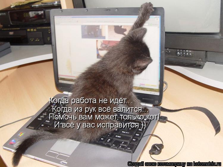 Котоматрица: Когда работа не идёт... Когда из рук всё валится... Помочь вам может только кот! И всё у вас исправится ))