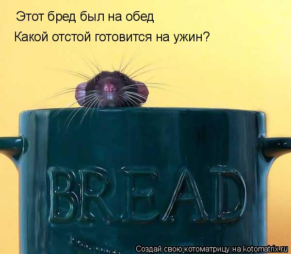 Котоматрица: Этот бред был на обед Какой отстой готовится на ужин?