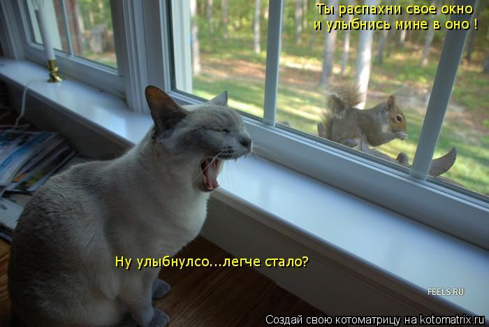 Котоматрица: Ты распахни свое окно  и улыбнись мине в оно ! Ну улыбнулсо...легче стало?