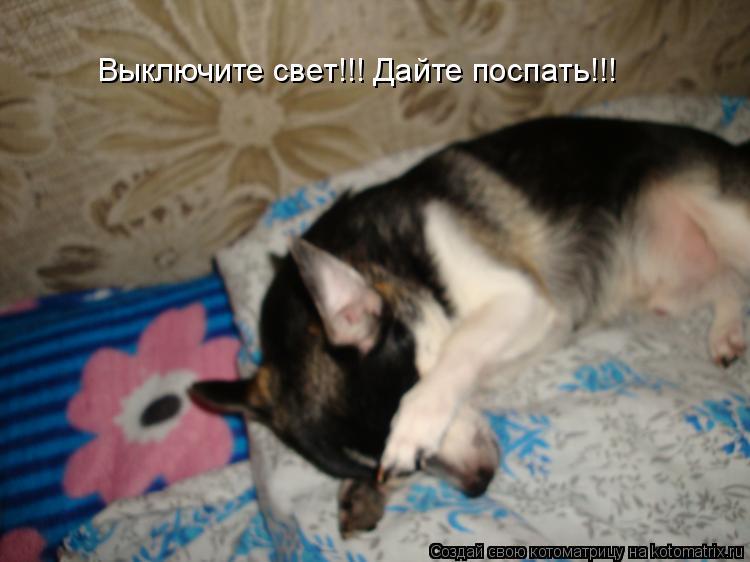 Котоматрица: Выключите свет!!! Дайте поспать!!!