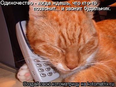 Котоматрица: Одиночество - когда ждешь, что кто-то позвонит... и звонит будильник.