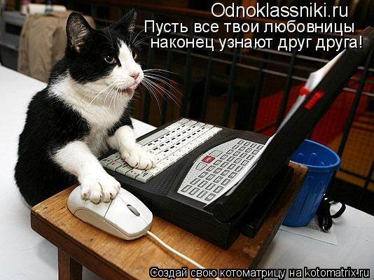 Котоматрица: Odnoklassniki.ru Пусть все твои любовницы наконец узнают друг друга!