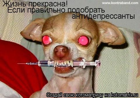 Котоматрица: Жизнь прекрасна! Если правильно подобрать антидепрессанты