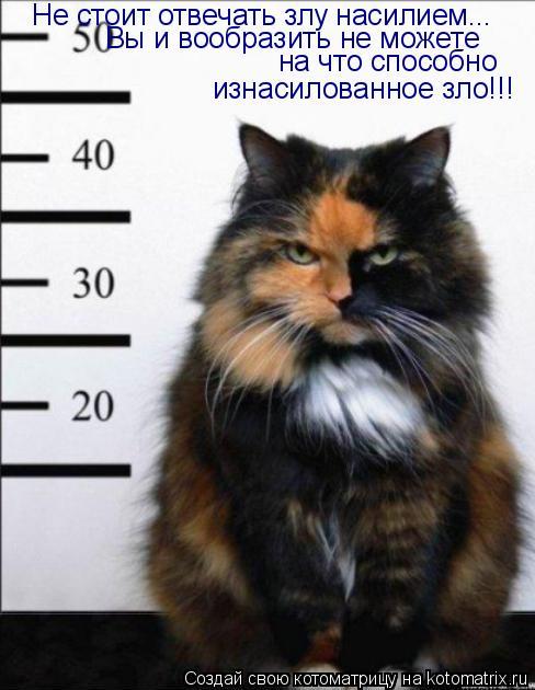 Котоматрица: Не стоит отвечать злу насилием... Вы и вообразить не можете на что способно изнасилованное зло!!!