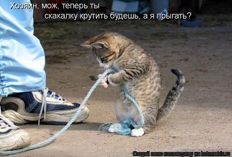 Котоматрица: Хозяин, мож, теперь ты  скакалку крутить будешь, а я прыгать?