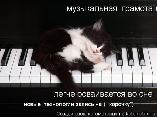 """Котоматрица: музыкальная  грамота легче осваивается   легче осваивается во сне  новые  технологии запись на ("""" корочку"""")"""