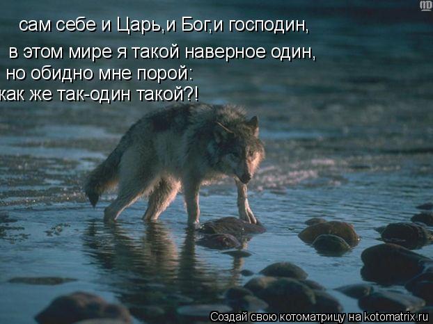 Котоматрица: сам себе и Царь,и Бог,и господин, в этом мире я такой наверное один, но обидно мне порой: как же так-один такой?!