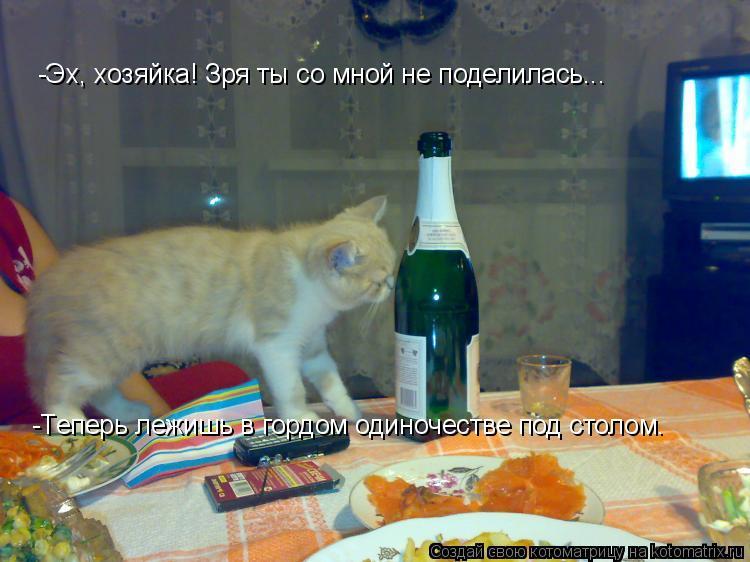 Котоматрица: -Эх, хозяйка! Зря ты со мной не поделилась... -Теперь лежишь в гордом одиночестве под столом.