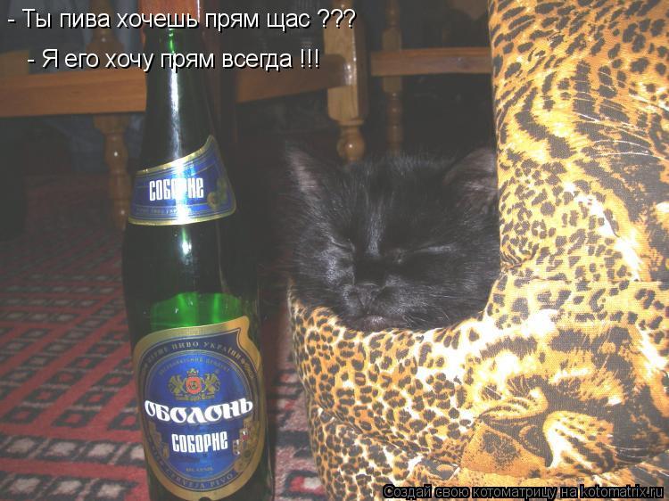 Котоматрица: - Ты пива хочешь прям щас ???   - Я его хочу прям всегда !!!