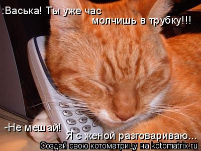 Котоматрица: молчишь в трубку!!! -Не мешай! :Васька! Ты уже час  Я с женой разговариваю...