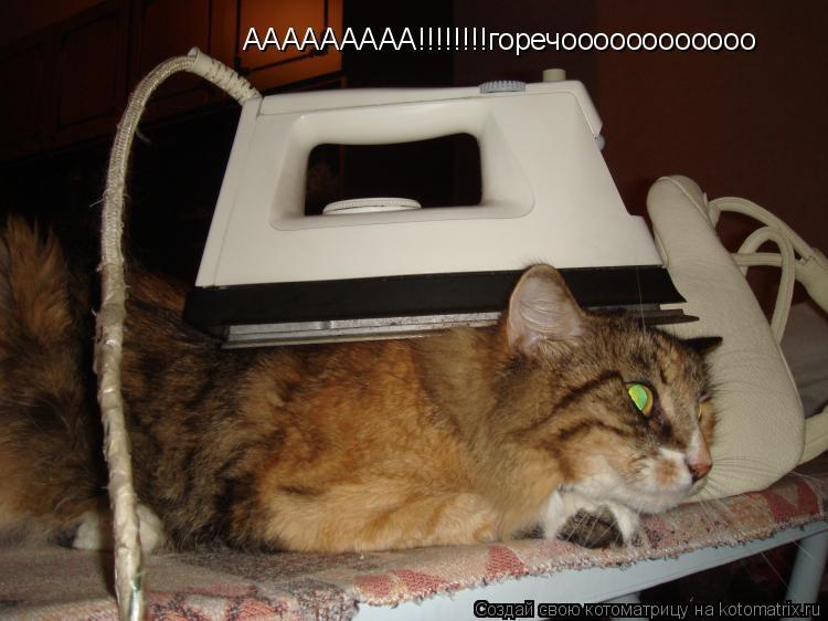 Котоматрица: ААААААААА!!!!!!!!горечоооооооооооо