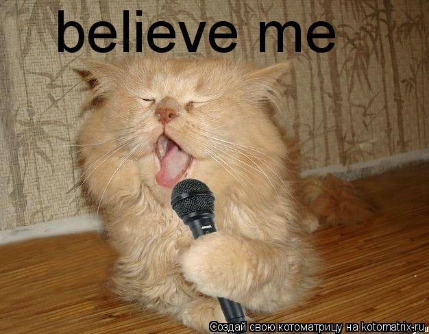 Котоматрица: believe me