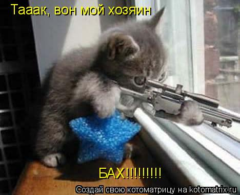 Котоматрица: Тааак, вон мой хозяин БАХ!!!!!!!!!