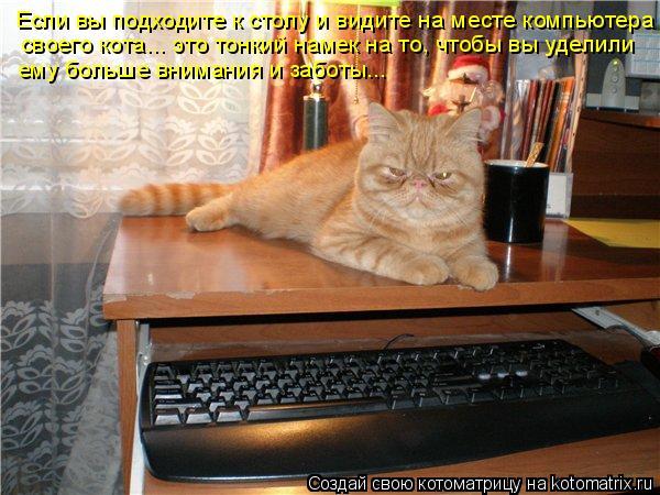 Котоматрица: Если вы подходите к столу и видите на месте компьютера  своего кота... это тонкий намек на то, чтобы вы уделили ему больше внимания и заботы...