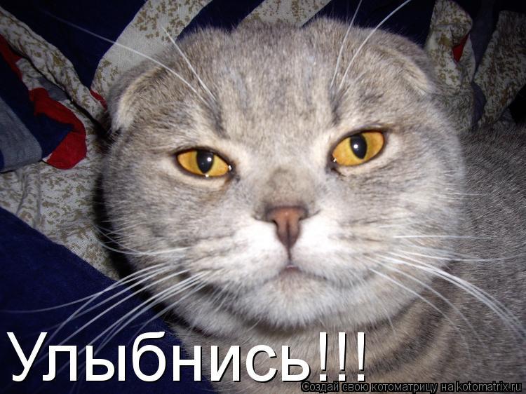 Котоматрица: Улыбнись!!!