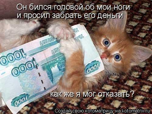 Котоматрица: Он бился головой об мои ноги и просил забрать его деньги как же я мог отказать?