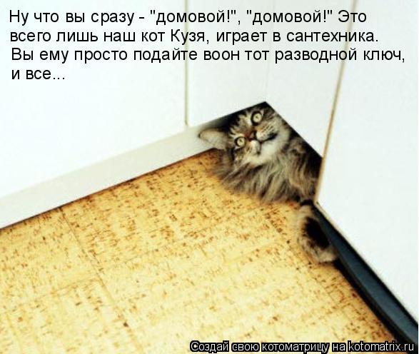 """Котоматрица: Ну что вы сразу - """"домовой!"""", """"домовой!"""" Это всего лишь наш кот Кузя, играет в сантехника.  Вы ему просто подайте воон тот разводной ключ,  и все..."""