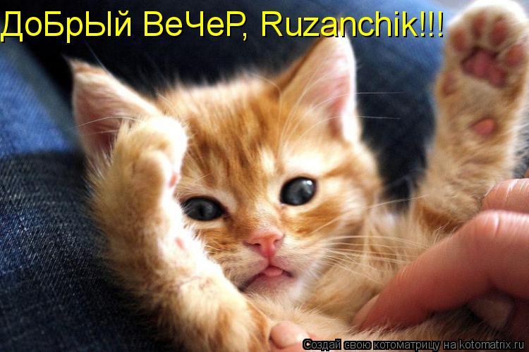 Котоматрица: ДоБрЫй ВеЧеР, Ruzanchik!!!