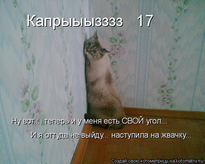Котоматрица: Капрыыызззз № 17