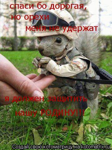 Котоматрица: спаси бо дорогая, но орехи меня не удержат я должен защитить нашу РОДИНУ!!!