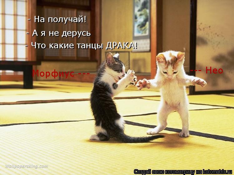 Котоматрица: - На получай! - А я не дерусь - Что какие танцы ДРАКА! Морфиус --- --- Нео