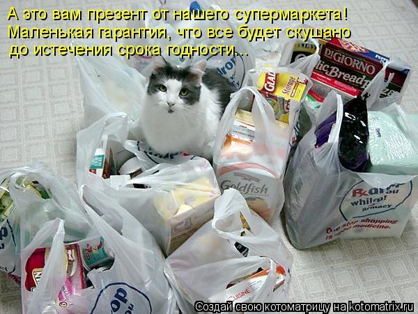 Котоматрица: А это вам презент от нашего супермаркета!  Маленькая гарантия, что все будет скушано  до истечения срока годности...