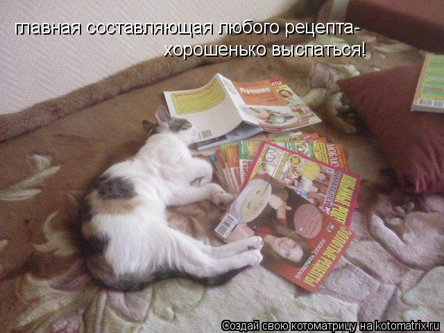 Котоматрица: главная составляющая любого рецепта- хорошенько выспаться!