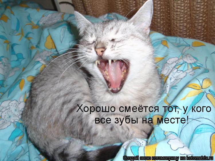 Котоматрица: Хорошо смеётся тот, у кого все зубы на месте!