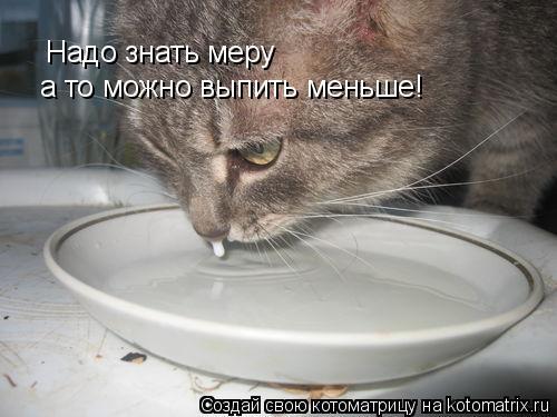 Котоматрица: Надо знать меру а то можно выпить меньше!