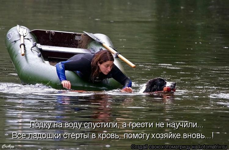 Котоматрица: Лодку на воду спустили, а грести не научили... Все ладошки стёрты в кровь, помогу хозяйке вновь...!