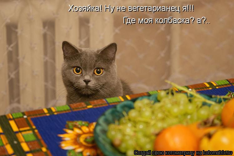 Котоматрица: Хозяйка! Ну не вегетарианец я!!! Где моя колбаска? а?..