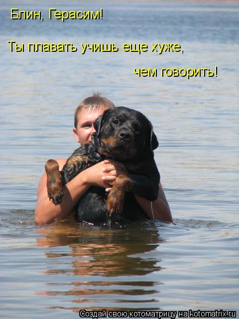 Котоматрица: Блин, Герасим! Ты плавать учишь еще хуже,  чем говорить!