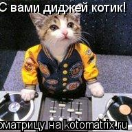 Котоматрица: С вами диджей котик!