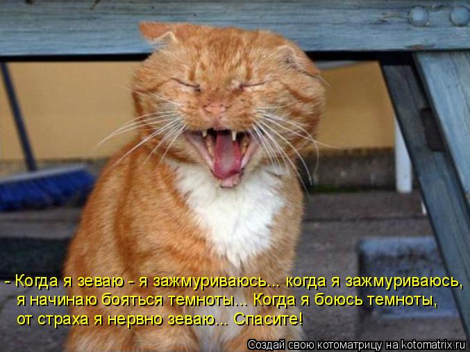 Котоматрица: - Когда я зеваю - я зажмуриваюсь... когда я зажмуриваюсь,  я начинаю бояться темноты... Когда я боюсь темноты,   от страха я нервно зеваю... Спасит