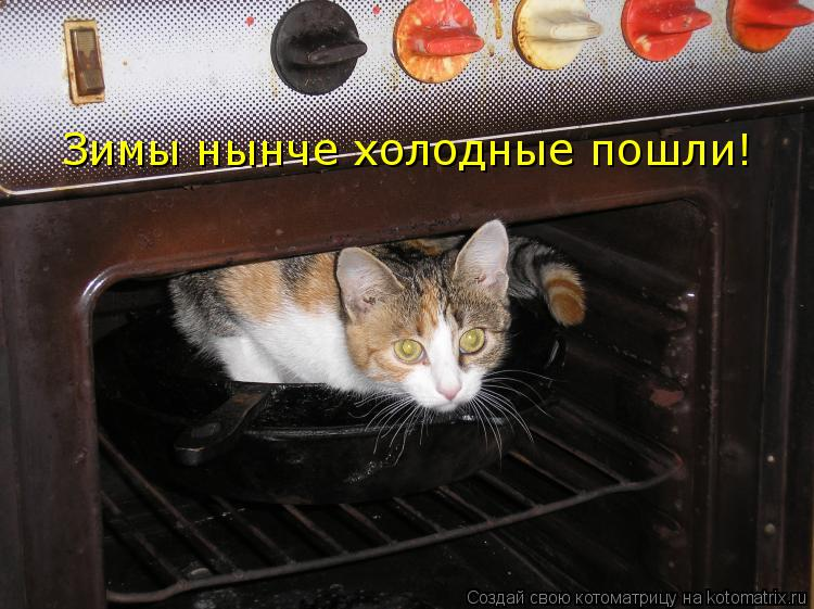 Котоматрица: Зимы нынче холодные пошли!