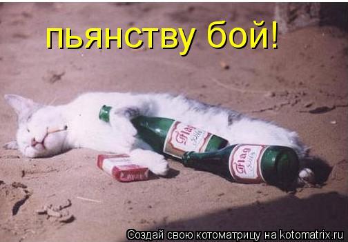 Котоматрица: пьянству бой!