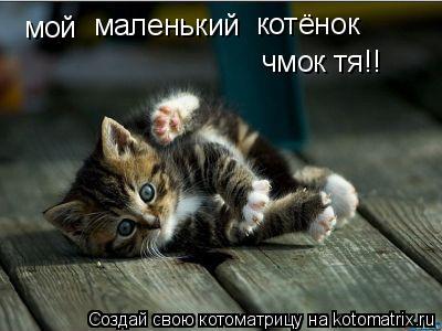 Котоматрица: мой маленький котёнок чмок тя!!