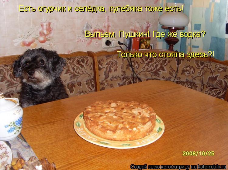 Котоматрица: Есть огурчик и селёдка, кулебяка тоже есть! Выпьем, Пушкин! Где же водка?  Только что стояла здесь?!