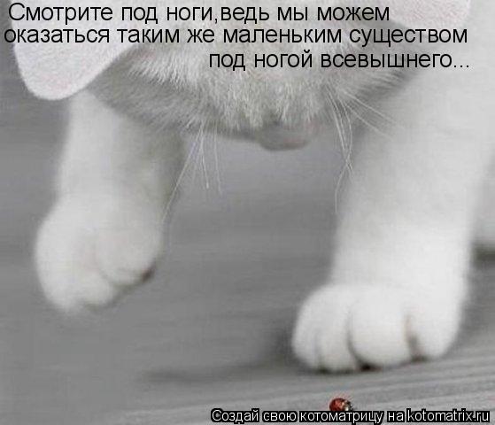 Котоматрица: Смотрите под ноги,ведь мы можем под ногой всевышнего... оказаться таким же маленьким существом