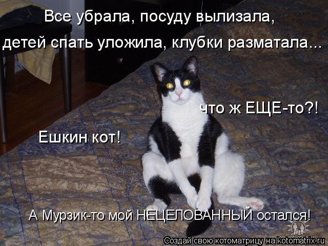 Котоматрица: Все убрала, посуду вылизала,  детей спать уложила, клубки разматала...  что ж ЕЩЕ-то?!                             Ешкин кот!