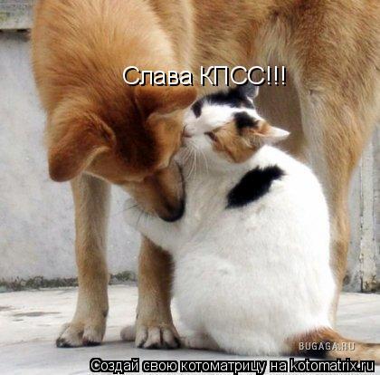 Котоматрица: Слава КПСС!!!