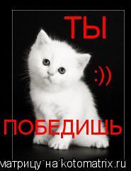 Котоматрица: ТЫ ПОБЕДИШЬ :))