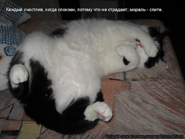Котоматрица: Каждый счастлив, когда спокоен, потому что не страдает; мораль - спите.
