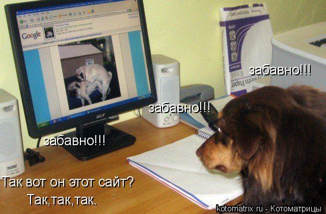 Котоматрица: Так вот он этот сайт? Так,так,так. забавно!!! забавно!!! забавно!!!