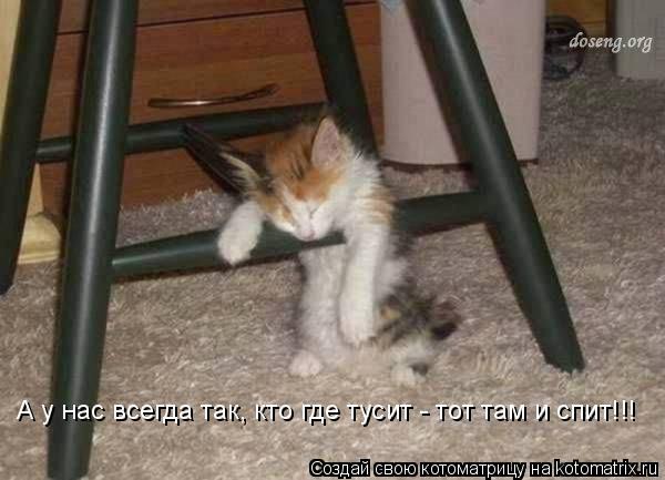 Котоматрица: А у нас всегда так, кто где тусит - тот там и спит!!!