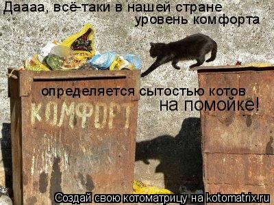 Котоматрица: Даааа, всё-таки в нашей стране уровень комфорта определяется сытостью котов  на помойке!