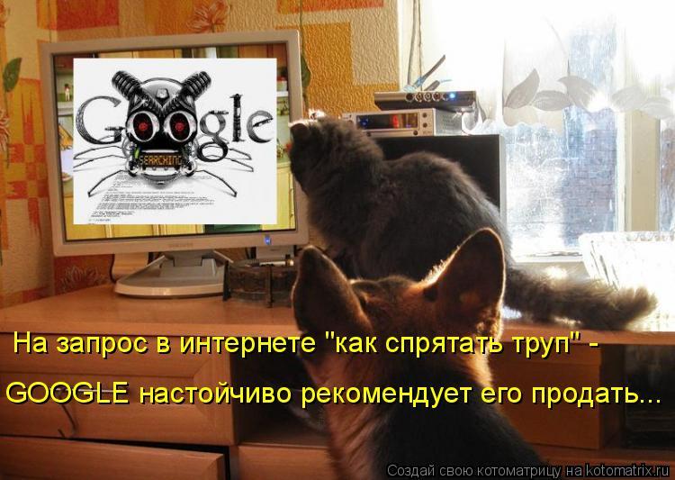 """Котоматрица: На запрос в интернете """"как спрятать труп"""" -  GOOGLE настойчиво рекомендует его продать..."""