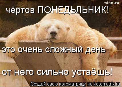 Котоматрица: чёртов ПОНЕДЬЛЬНИК! это очень сложный день от него сильно устаёшь!