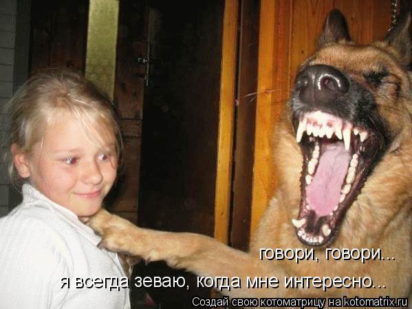 Котоматрица: говори, говори... я всегда зеваю, когда мне интересно...
